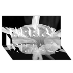 Exotic Black and White Flower 2 Merry Xmas 3D Greeting Card (8x4)