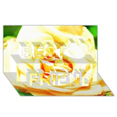 Orange Yellow Rose Best Friends 3D Greeting Card (8x4)
