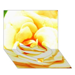 Orange Yellow Rose Heart Bottom 3D Greeting Card (7x5)