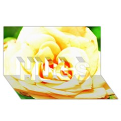 Orange Yellow Rose Hugs 3d Greeting Card (8x4)