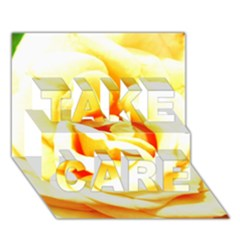 Orange Yellow Rose Take Care 3d Greeting Card (7x5)