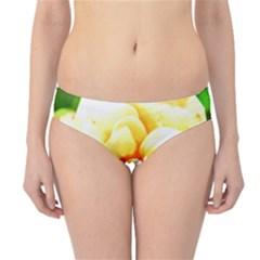 Orange Yellow Rose Hipster Bikini Bottoms