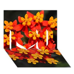 Orange and Red Weed I Love You 3D Greeting Card (7x5)