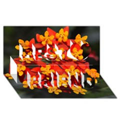 Orange and Red Weed Best Friends 3D Greeting Card (8x4)