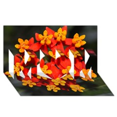 Orange And Red Weed Mom 3d Greeting Card (8x4)