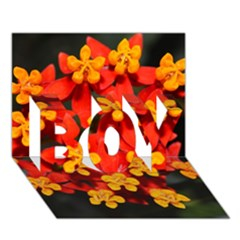 Orange And Red Weed Boy 3d Greeting Card (7x5)