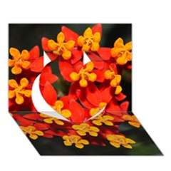 Orange And Red Weed Heart 3d Greeting Card (7x5)