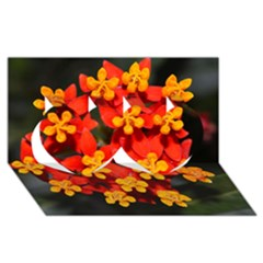 Orange and Red Weed Twin Hearts 3D Greeting Card (8x4)