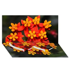 Orange And Red Weed Twin Heart Bottom 3d Greeting Card (8x4)