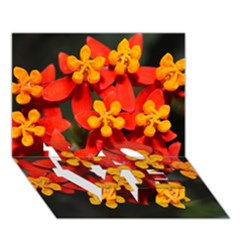 Orange and Red Weed LOVE Bottom 3D Greeting Card (7x5)