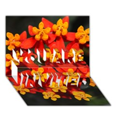 Orange and Red Weed YOU ARE INVITED 3D Greeting Card (7x5)