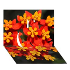 Orange And Red Weed Apple 3d Greeting Card (7x5)