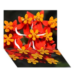 Orange And Red Weed Clover 3d Greeting Card (7x5)
