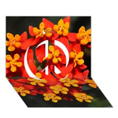 Orange and Red Weed Peace Sign 3D Greeting Card (7x5)