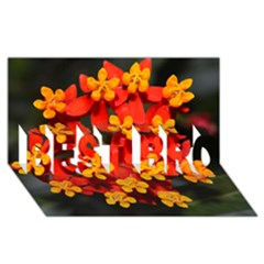 Orange And Red Weed Best Bro 3d Greeting Card (8x4)