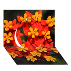 Orange and Red Weed Circle 3D Greeting Card (7x5)