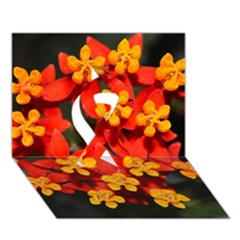 Orange And Red Weed Ribbon 3d Greeting Card (7x5)