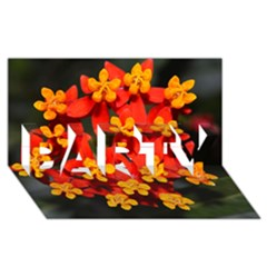 Orange and Red Weed PARTY 3D Greeting Card (8x4)