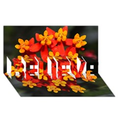 Orange and Red Weed BELIEVE 3D Greeting Card (8x4)