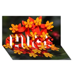 Orange and Red Weed HUGS 3D Greeting Card (8x4)