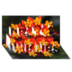 Orange And Red Weed Best Wish 3d Greeting Card (8x4)