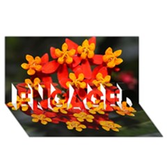 Orange and Red Weed ENGAGED 3D Greeting Card (8x4)