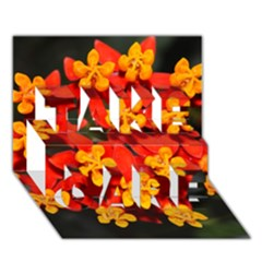 Orange and Red Weed TAKE CARE 3D Greeting Card (7x5)