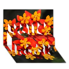 Orange and Red Weed You Rock 3D Greeting Card (7x5)