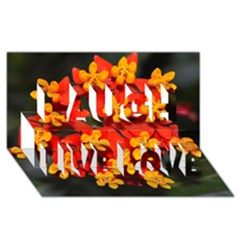 Orange and Red Weed Laugh Live Love 3D Greeting Card (8x4)
