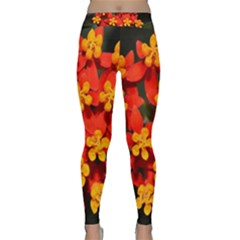 Orange And Red Weed Yoga Leggings