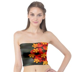 Orange And Red Weed Women s Tube Tops