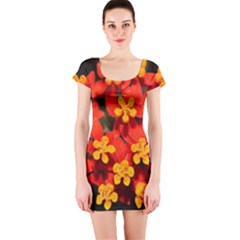 Orange And Red Weed Short Sleeve Bodycon Dresses