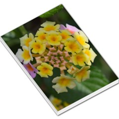 Colorful Flowers Large Memo Pads