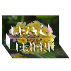 Colorful Flowers Best Friends 3d Greeting Card (8x4)