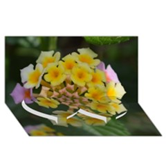 Colorful Flowers Twin Heart Bottom 3D Greeting Card (8x4)