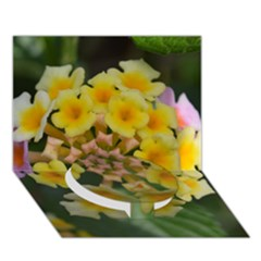 Colorful Flowers Circle Bottom 3D Greeting Card (7x5)