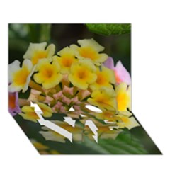 Colorful Flowers LOVE Bottom 3D Greeting Card (7x5)