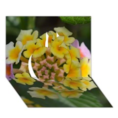 Colorful Flowers Apple 3D Greeting Card (7x5)