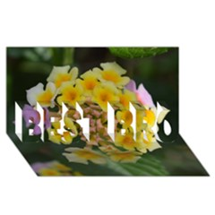 Colorful Flowers BEST BRO 3D Greeting Card (8x4)