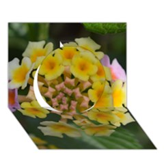 Colorful Flowers Circle 3D Greeting Card (7x5)