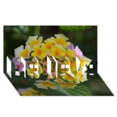Colorful Flowers BELIEVE 3D Greeting Card (8x4)