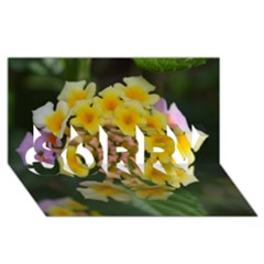 Colorful Flowers SORRY 3D Greeting Card (8x4)