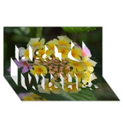 Colorful Flowers Best Wish 3D Greeting Card (8x4)