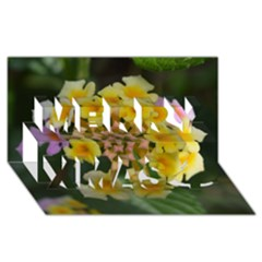 Colorful Flowers Merry Xmas 3d Greeting Card (8x4)