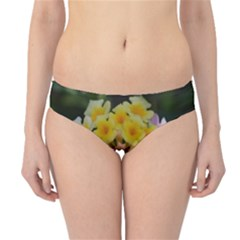 Colorful Flowers Hipster Bikini Bottoms