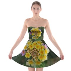 Colorful Flowers Strapless Bra Top Dress