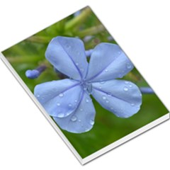 Blue Water Droplets Large Memo Pads