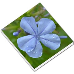 Blue Water Droplets Small Memo Pads