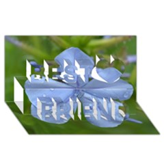 Blue Water Droplets Best Friends 3d Greeting Card (8x4)