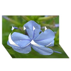 Blue Water Droplets Twin Hearts 3D Greeting Card (8x4)